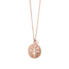 01X27-00351 Oxette Lucky Charm Necklace