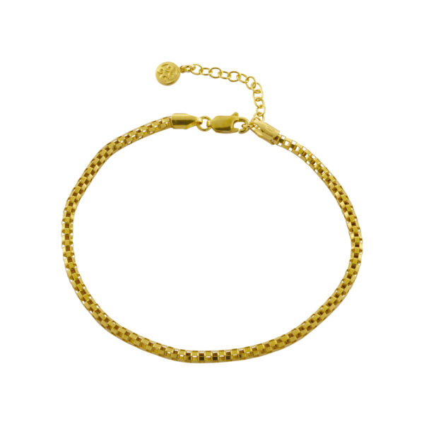 02X05-02076 Oxette Striking Gold Anklet